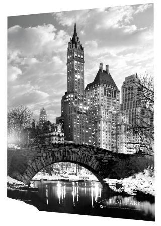 New York - Central Park - Snow