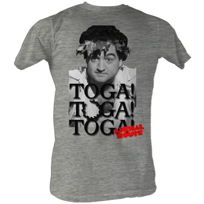Animal House  - Toga Party