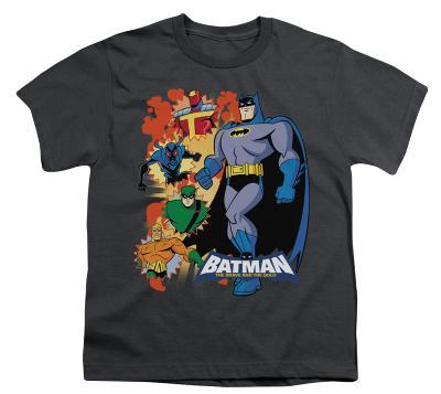 Youth: Batman BB-Batman & Friends