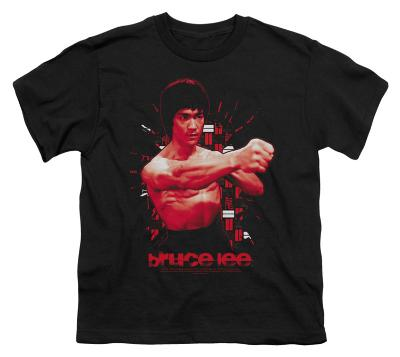 Youth: Bruce Lee-The Shattering Fist