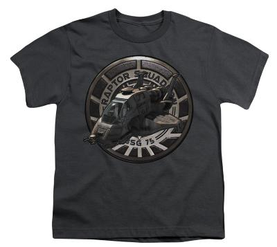 Youth: Battle Star Galactica-Raptor Squadron