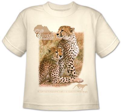 Youth: Wildlife-Cheetah