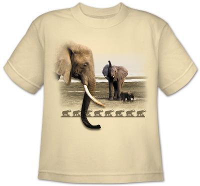 Youth: Wildlife-Elephant