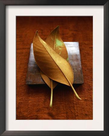 Sepia Leaf Pair