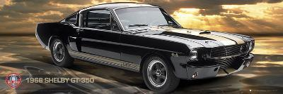 Ford Shelby - GT350