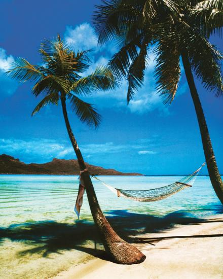 Tropical Beaches: Tropical Beach Posters At AllPosters.com