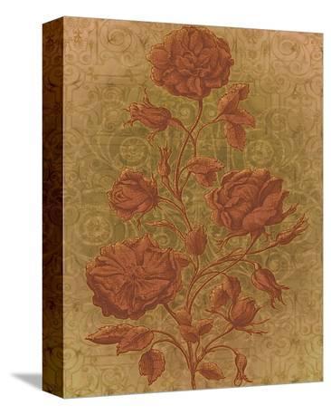 Amalia Roses