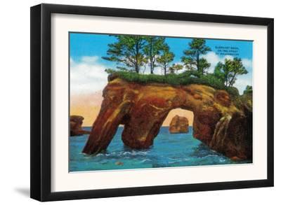 Elephant Rock on Washington Coast - Pacific Coast, WA