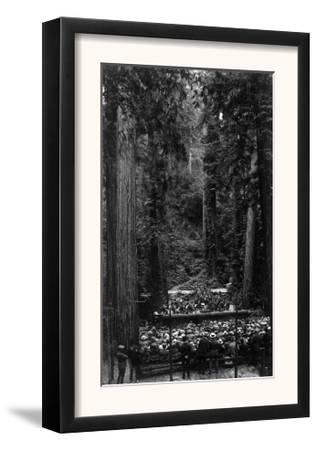 Crowds Gathered for a Concert - Bohemian Grove, CA