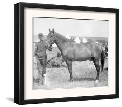 "Horse ""Comanche"" the sole Survivor of the Custer Massacre Photograph - South Dakota"