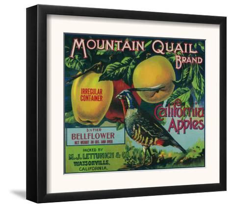 Watsonville California Mountain Quail Bird Apple Fruit Crate Label Art Print