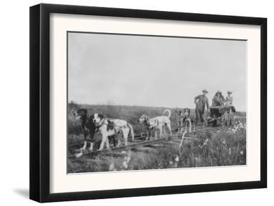Dog Team pulling a Railroad Cart Photograph - Nome, AK