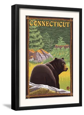 Connecticut - Black Bear in Forest