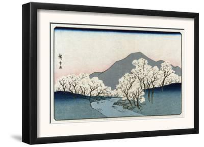 Grove of Cherry Trees, Japanese Wood-Cut Print