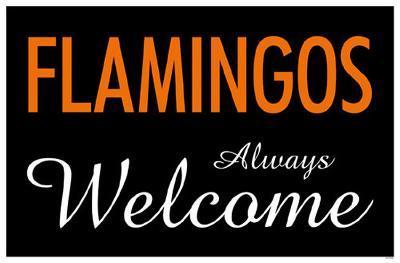 Flamingos Always Welcome