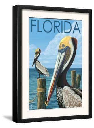 Brown Pelicans - Florida, c.2008