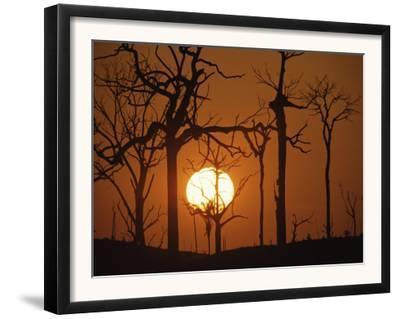 Sunset in Tropical Rainforest after Destruction by Fire, Brazil