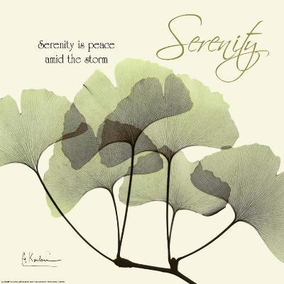 Serenity Ginko