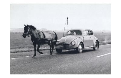 Pony Pulling Volkswagon, France