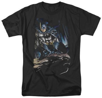 Batman - Perched
