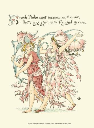 Shakespeare's Garden VI (Carnation)