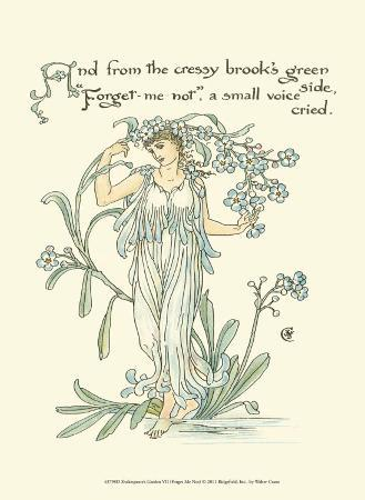 Shakespeare's Garden VII (Forget me not)