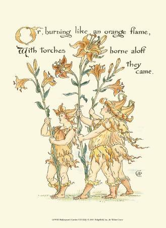 Shakespeare's Garden VIII (Lily)