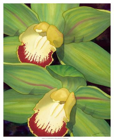 Lime Orchid I