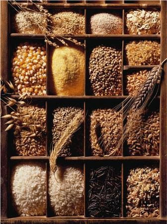 Grains and Rice