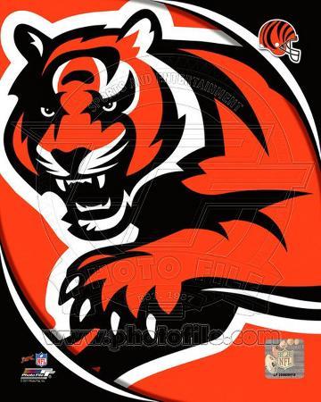 NFL Cincinnati Bengals 2011 Logo