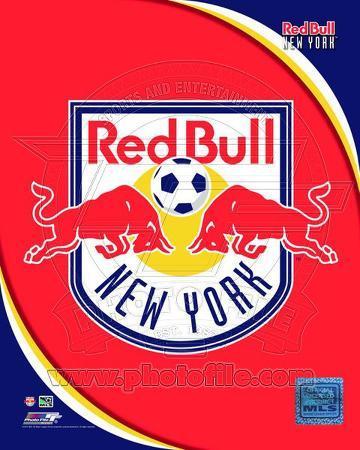 2011 New York Red Bulls Team Logo