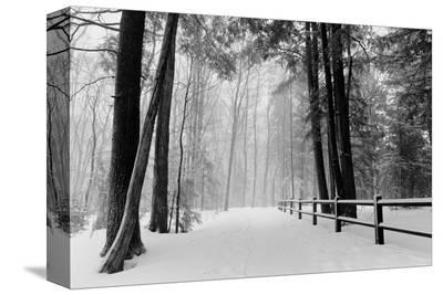 Winter Country Lane, Michigan
