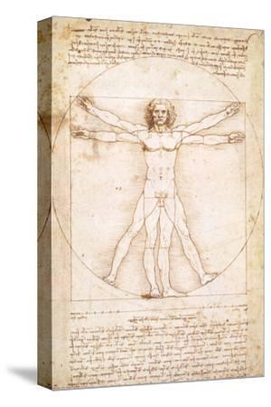 Vitruvius Man