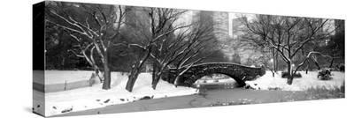 Bridge Stone in Central Park