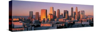 Downtown Los Angeles Skyline I
