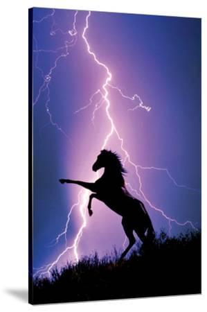 Lightning and Silhouette of a Horse