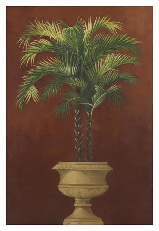 Potted Palm Red IV