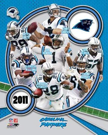 Carolina Panthers 2011 Team Composite