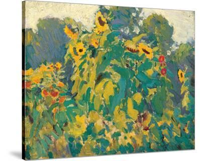 Sunflowers, Thornhill