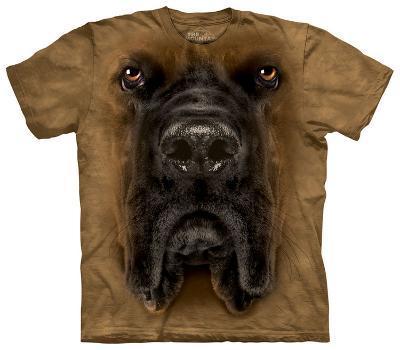 Mastiff Face