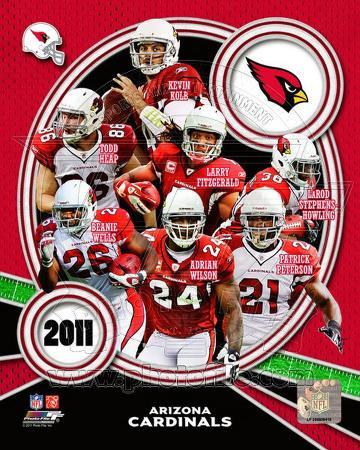 Arizona Cardinals 2011 Team Composite