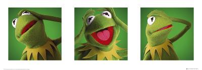 The Muppets-Kermit