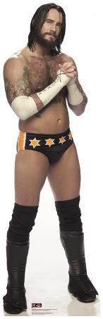 CM Punk - WWE