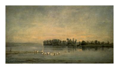 Le Marais de Canards