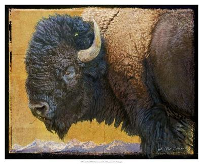 Bison Portrait III