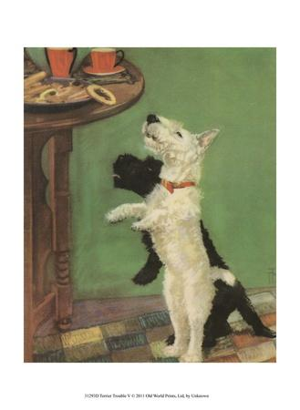 Terrier Trouble V