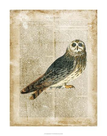 Antiquarian Birds I