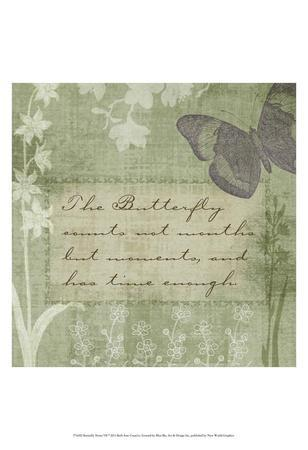 Butterfly Notes VII