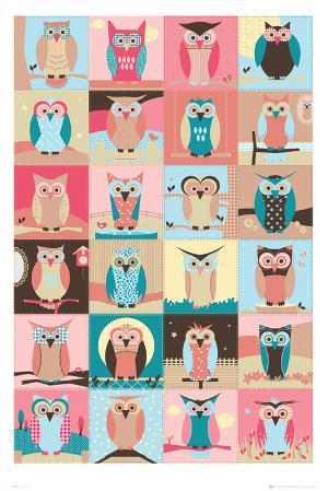 Owls-Compilation