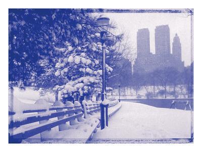 New York City In Winter VIII In Colour